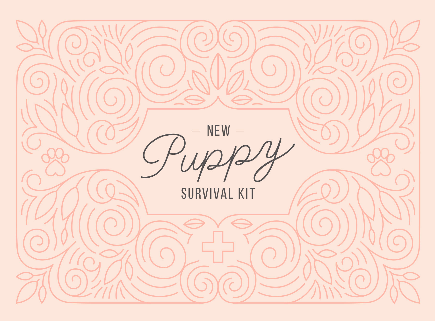 The puppy survival kit