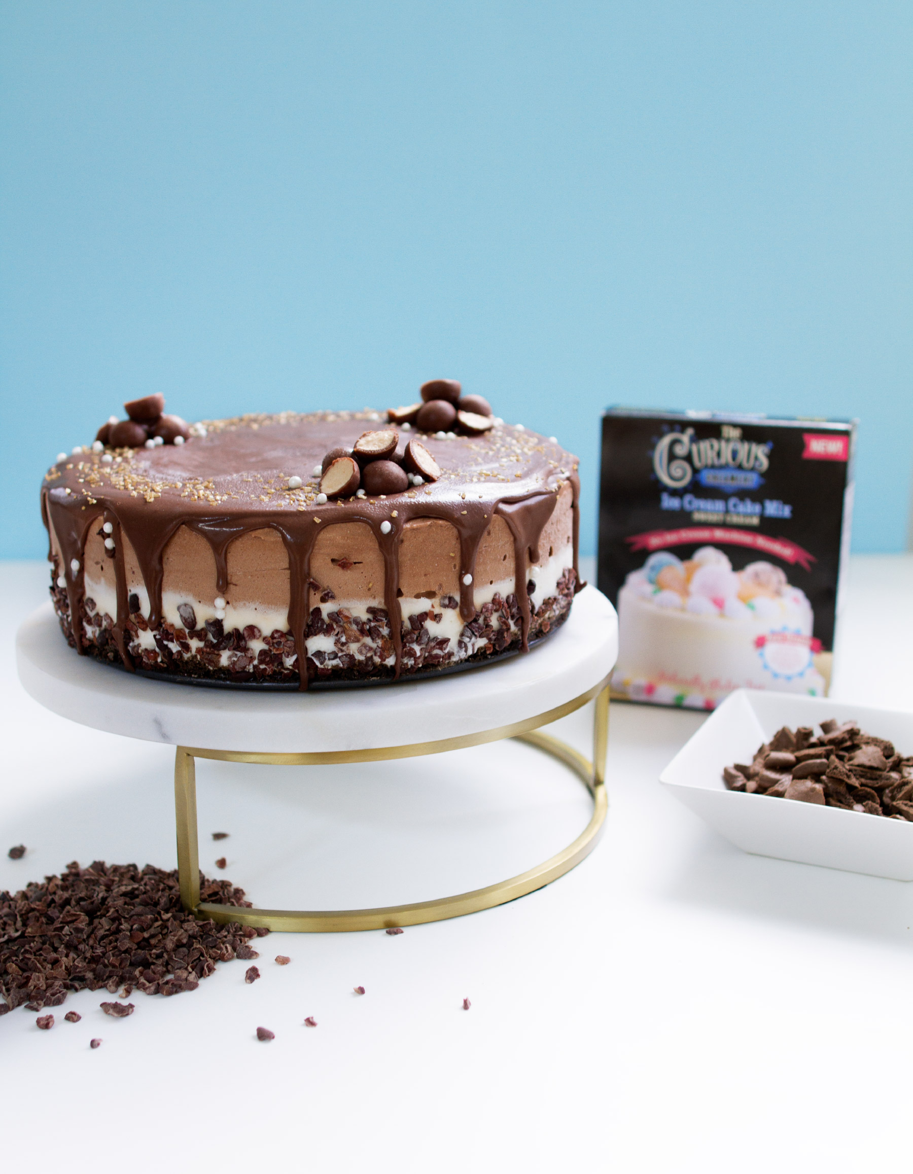 Chocolate ice cream cake with chocolate icing