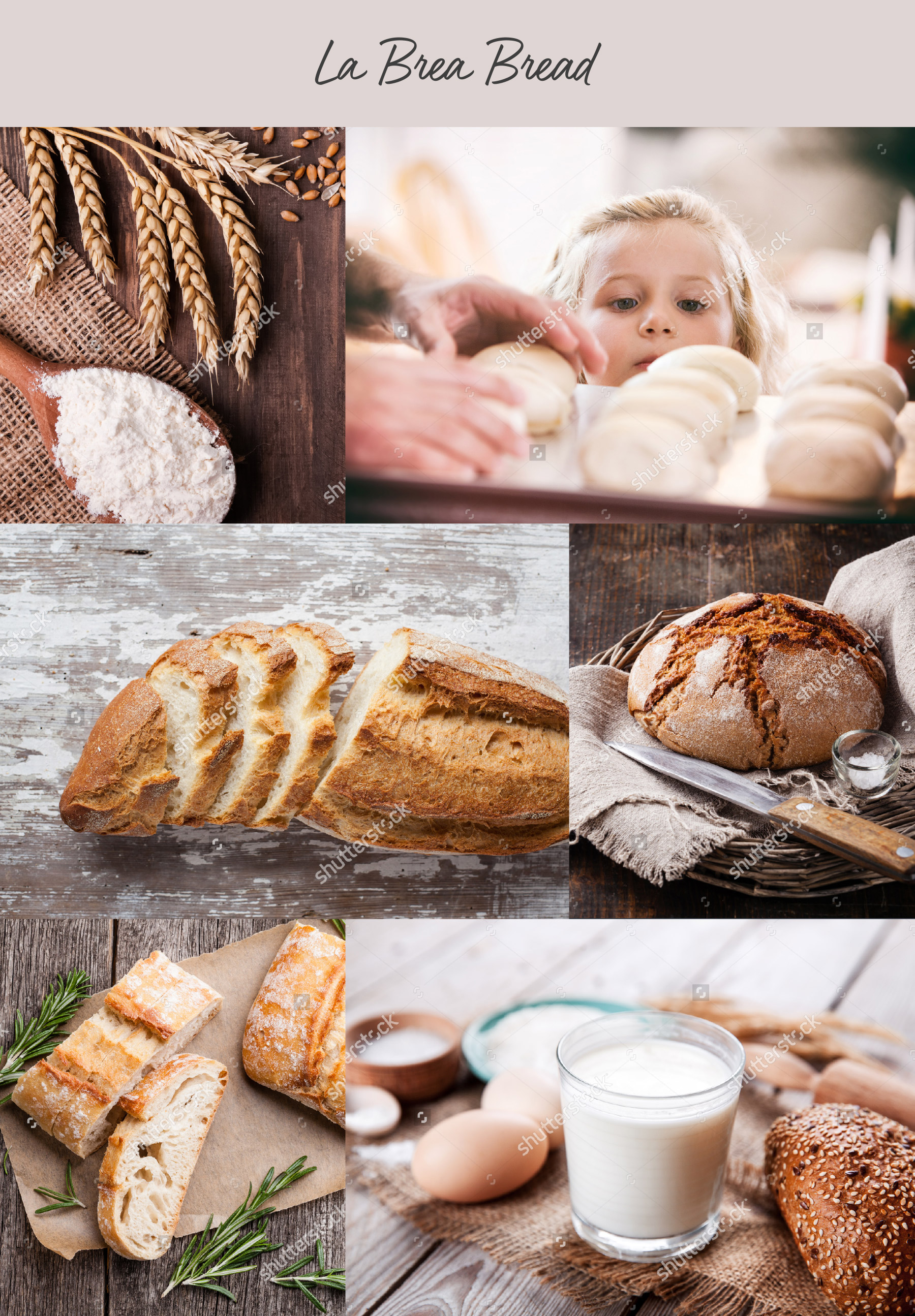 Collage of delicious baked bread